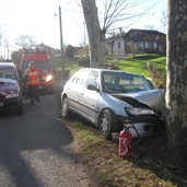 Peugeot driver lost control and hit a tree