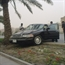 Saudi driver crash his ford into a palm tree